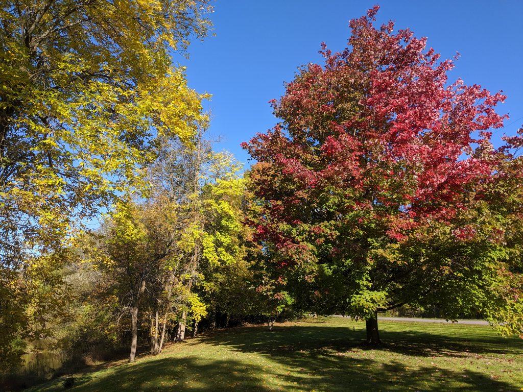 Paysage de début d'automne